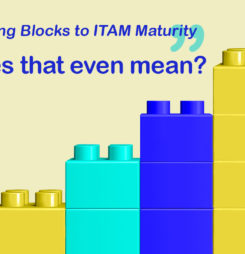 What are the Building Blocks to ITAM Maturity?