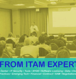Learn from ITAM Experts